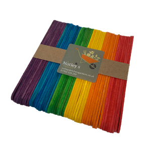 Nutley's Coloured Wooden Seedling Labels Rainbow Mix plant markers tags birch wood 11.4cm