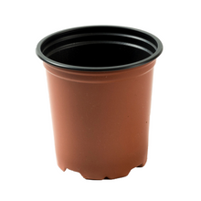 Load image into Gallery viewer, Nutley's 9cm Round Plastic Plant Pots