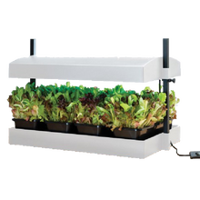 Load image into Gallery viewer, Garland Grow Light Garden Propagator: Grow Salad Crops & Herbs Indoors All Year Round