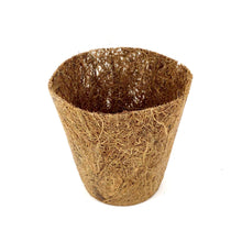 Load image into Gallery viewer, Nutley's 8cm Coco Fibre Biodegradable Reusable Easy Transplanting Flexible Plant Pots in both thick and thin
