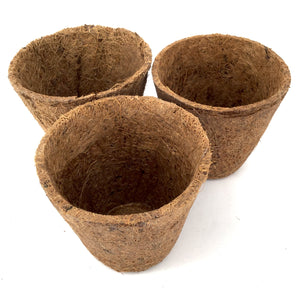Nutley's 8cm Coco Fibre Biodegradable Reusable Easy Transplanting Flexible Plant Pots in both thick and thin