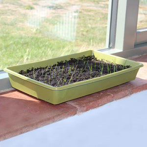 Haxnicks Bamboo Biodegradable 37cm Seed Tray