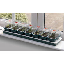 Load image into Gallery viewer, Garland Super 7 Electric Heated Windowsill Seed Propagator 7 units in one