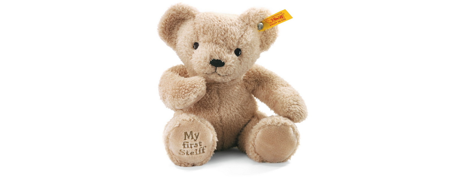 Une peluche Ours