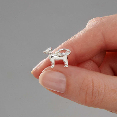 Jack Russell Terrier Silver Charm