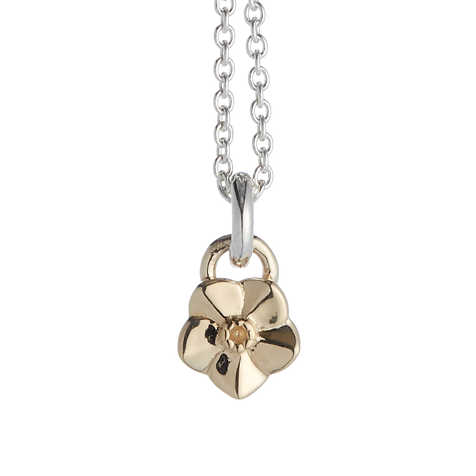 Tiny Forget-Me-Not Silver & Gold Necklace