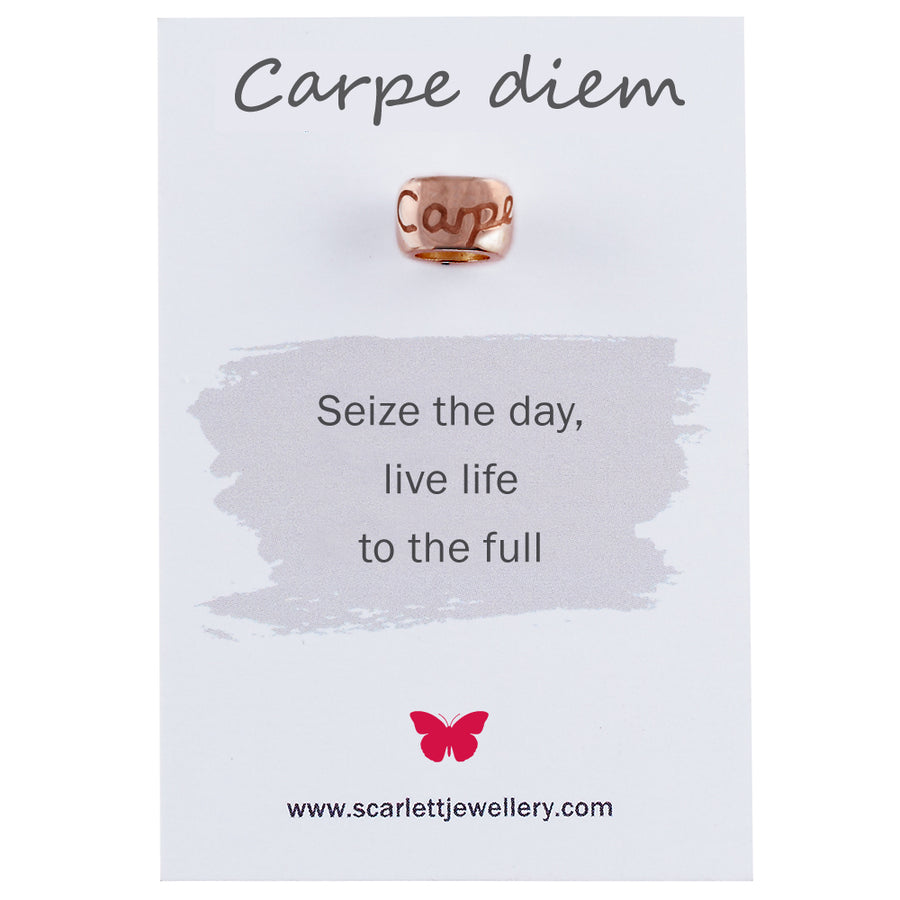 Carpe Diem Solid Pink Gold Charms Fit Pandora