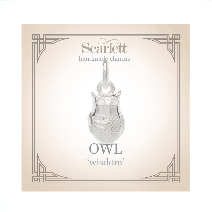 silver owl charm with book gift for passing exams graduation scarlett jewellery