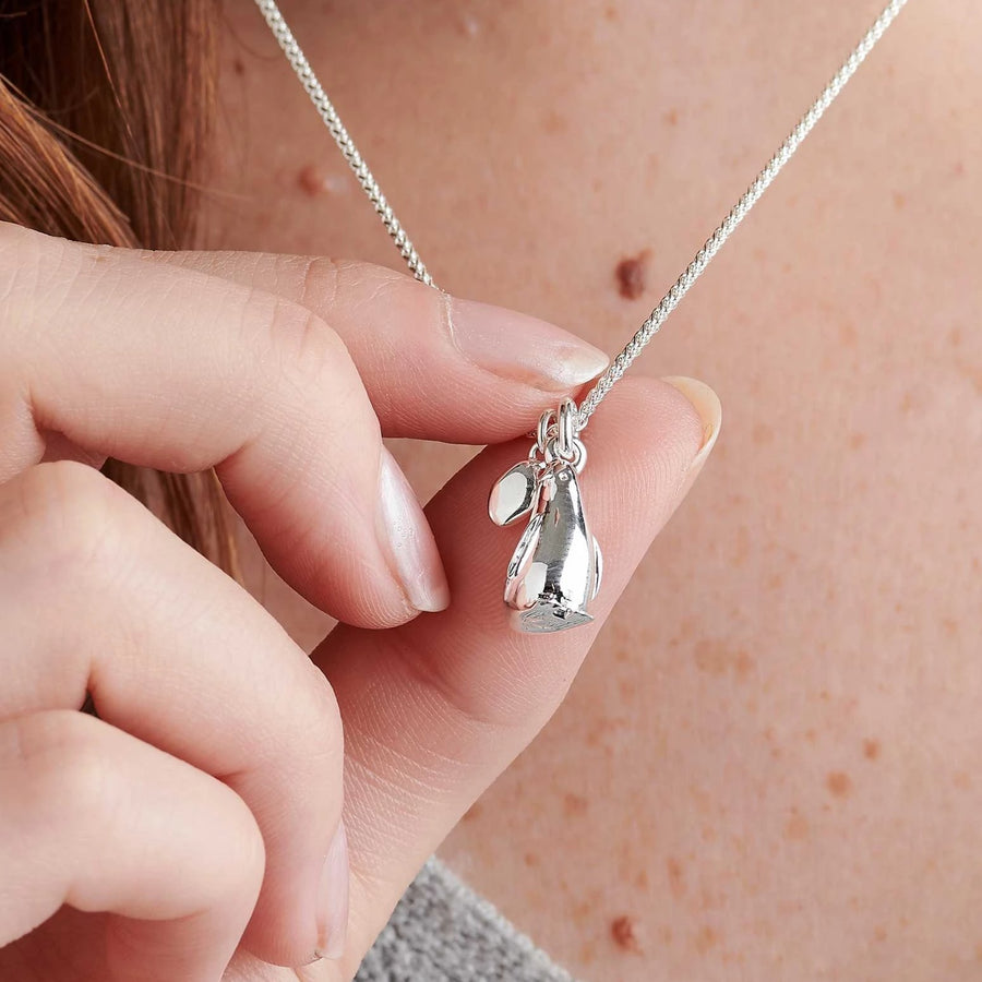 Personalised penguin and pebble necklace romantic gift girl to girlfriend boy to  girlfriend Scarlett Jewellery
