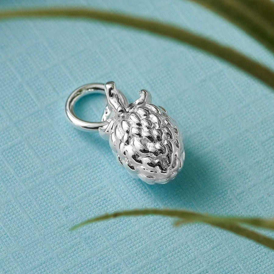 raspberry fruit silver charm meaning symbolising kindness links of london style charms
