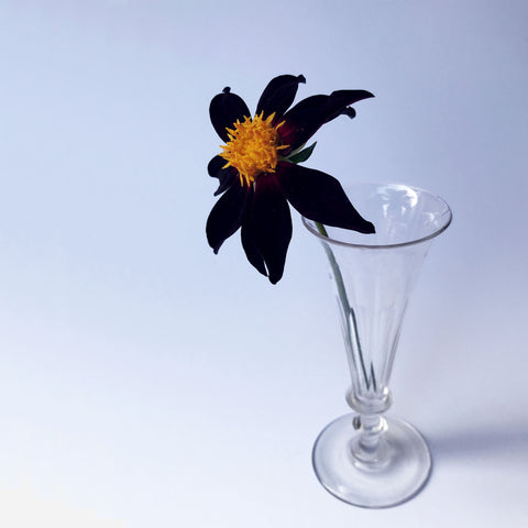 Glass Stem Vase