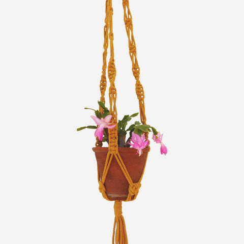 Mustard Recycled Yarn Macrame Plant Hanger - White Space Home