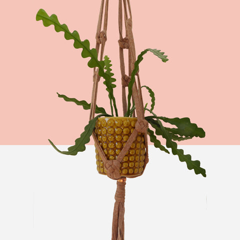 Recycled Yarn Macramé Plant Hanger - White Space Home
