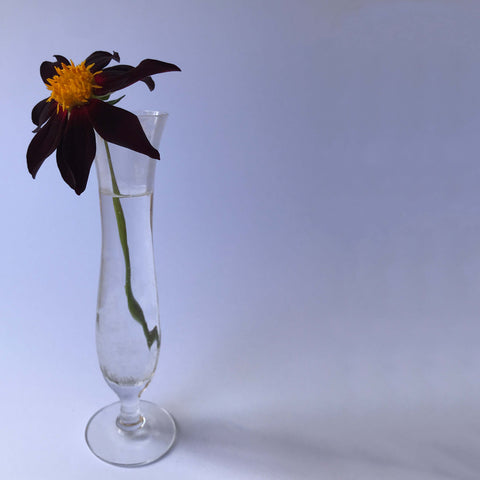 Single Stem Vase - White Space Home