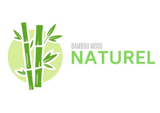 Bambou moso naturel