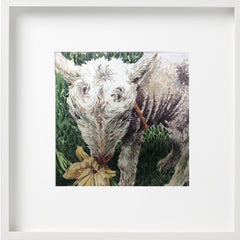 Water colour painting of Topsy Farms' foster lamb, eating a daffodil