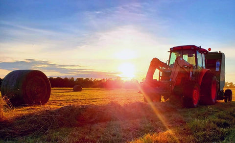 Kubota tractor making Topsy Farms' large round bales in a field at sunset