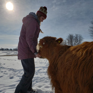 Woman in toque and parka hand-feeding a shaggy red highland cow in a snowy barnyard, with the sun high in the sky