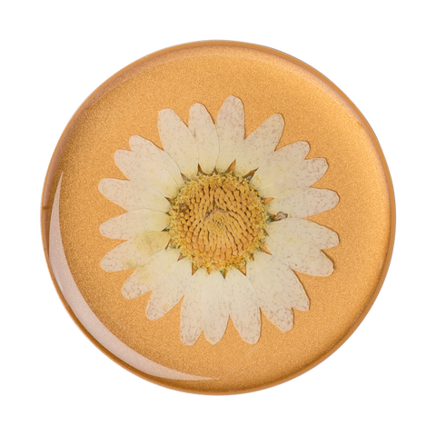 NYHET 🔄 PopSockets - Press Flower Daisy White POPGRIP