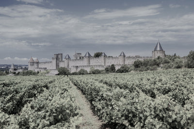 Around the World of Wine - Southern France
