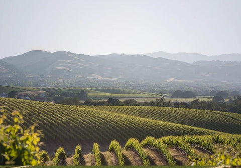 Wente Vineyards Californian Wine Dinner - Friday 21st February - Tasting/Event - www.baythornewines.co.uk