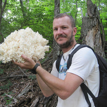 Load image into Gallery viewer, Lions Mane Sawdust Spawn - (Hericium spp.) - 5lb