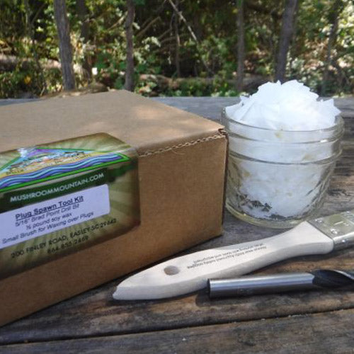 Starter Log Grower Kit