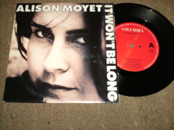 Alison Moyet - It Wont Be Long