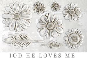 HE LOVES ME | IOD DECOR MOULDS™
