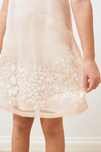 Load image into Gallery viewer, Embroidered Organza Dress