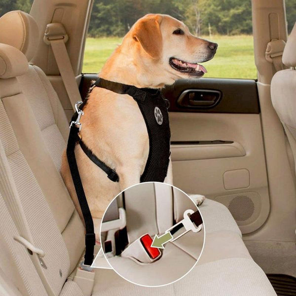 Dog Car Seat Harness & Safety Belt unique jewelry design GemCreature