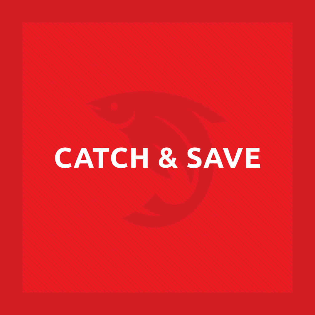 Catch & save