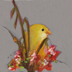 "Goldfinch - 6"" x 6"" canvas reproduction"