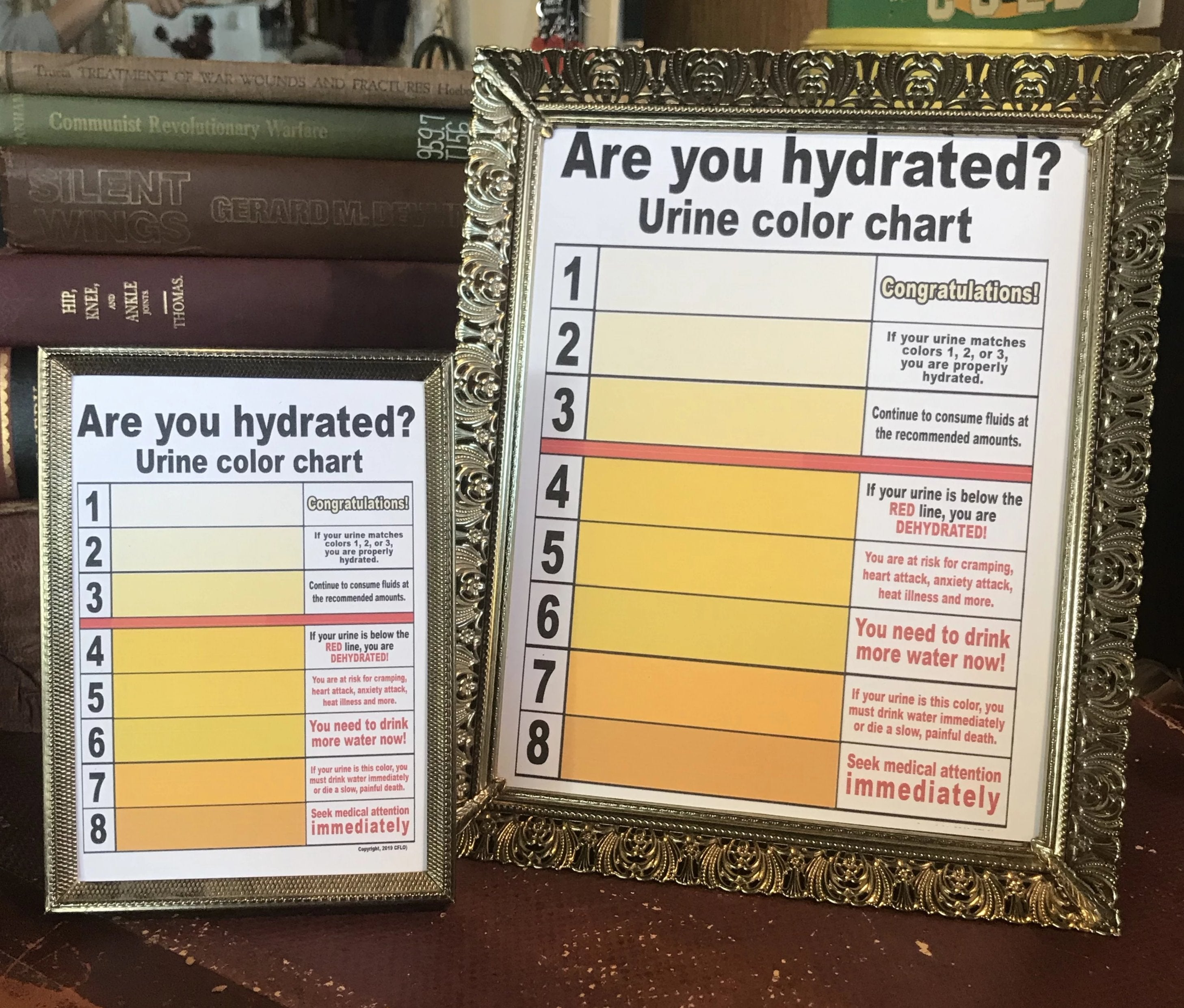Are you hydrated? CFLO Urine Color Chart!