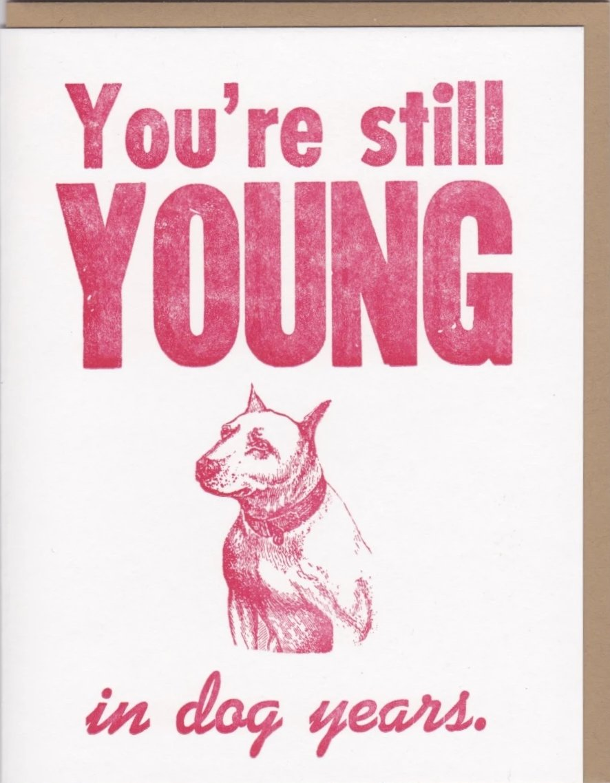 """You're Still Young In Dog Years"" by Zeichen Press"
