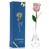 LiuLiugo Gifts for mom,24K Gold Rose Made from Real Fresh Long Stem Rose Flower with Transparent vase for Valentine's Day,Mother's Day,Christmas Day, Anniversary, Birthday (G.Pink)