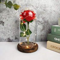 BESWORLDS Beauty and The Beast Rose, Enchanted Red Silk Rose in Glass Dome with LED Light, Romantic Everlasting Rose Kit, for Best Gifts Valentine's Day & Girlfriend & & Wedding Anniversary & Birthday