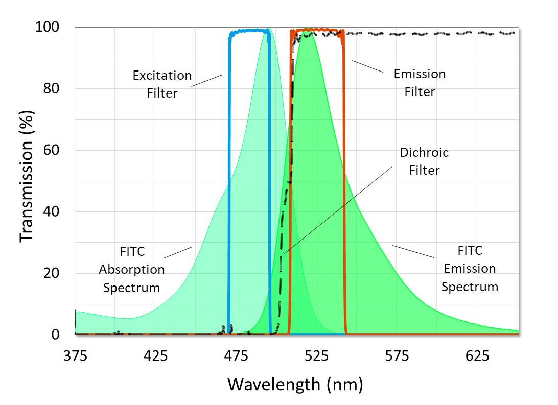 Fluorescence Filter Sets for Microscopy and Imaging