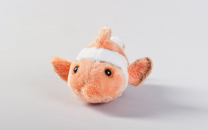 Clownfish Plush Adoption