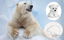 Load image into Gallery viewer, Polar Bear Adoption Gift Pack