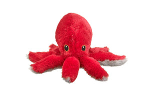 Octopus Adoption Gift Pack