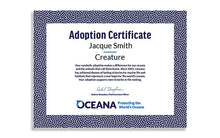 Load image into Gallery viewer, Blue Whale Plush Adoption Certificate