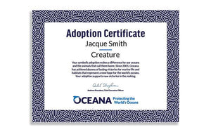 Puffin Cookie Cutter Adoption Certificate