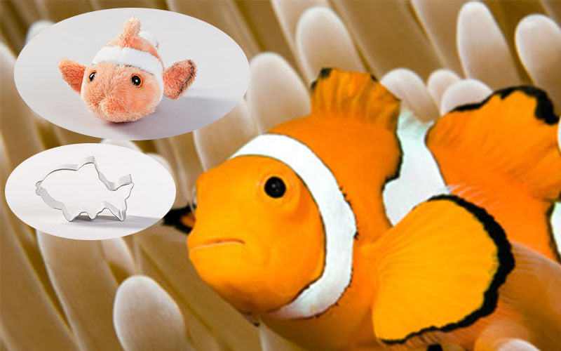 Clownfish Adoption Gift Pack