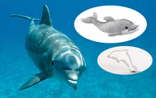 Load image into Gallery viewer, Dolphin Adoption Gift Pack