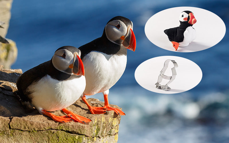 Puffin Adoption Gift Pack