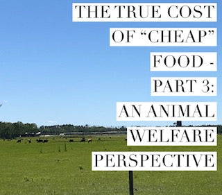 "The True Cost of ""Cheap"" Food - Part 3: An Animal Welfare Perspective"