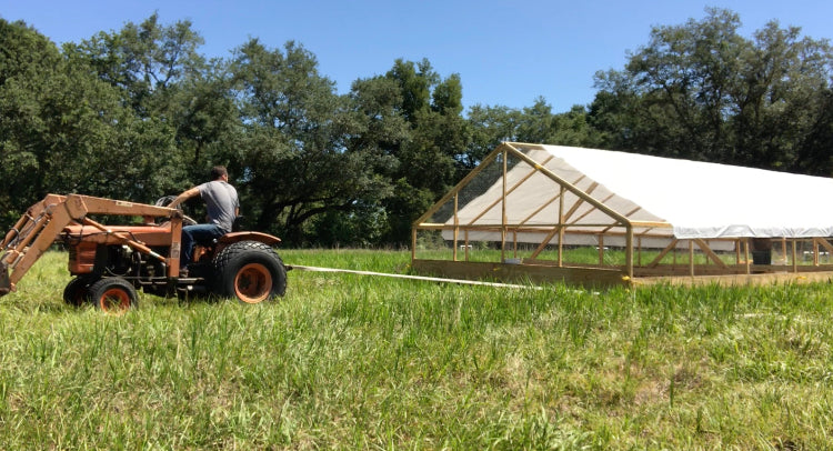 Pulling the chicken tractor