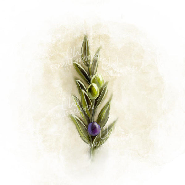 Olive Branch, Digital Painting - Digital Download