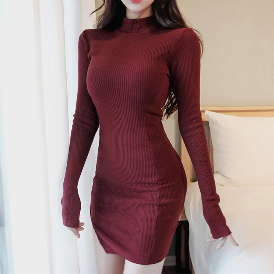 Slim-Fit High-Necked Knit Dress